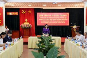 Rà soát, bổ sung các giải pháp, thực hiện hiệu quả Nghị quyết của Trung ương và Thành ủy
