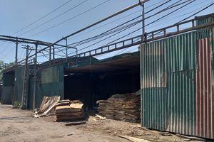 Nhà xưởng hoạt động trái phép trên đất nông trường
