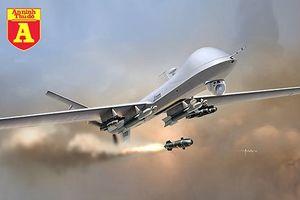 'Sát thủ trên không' MQ-9 của Mỹ vừa bị phiến quân Hồi giáo bắn hạ