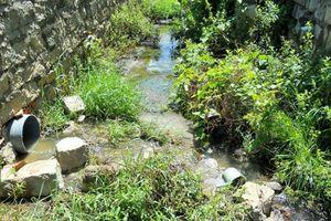 Xả nước thải ra môi trường, 4 công ty bị phạt hơn 400 triệu đồng