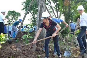 Huyện Gia Lâm: Chuyển biến mạnh mẽ trong công tác vệ sinh môi trường