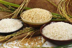 Gạo Việt chưa đủ 'đậm đà'