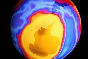 Tầng ozone của Trái Đất đang dần hồi phục
