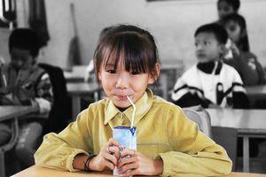 Thấy gì qua thông điệp của người đàn bà sữa Thái Hương về chương trình sữa học đường?