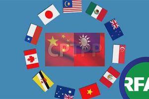 Việt Nam không kịp thực thi Hiệp định CPTPP trước ngày 1/1/2019