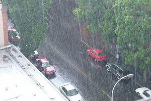 Thời tiết 9/11: Nghệ An mưa to đến rất to, dông kèm gió giật mạnh