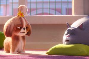 Đứng ngồi không yên với trailer đầu tiên của 'Đẳng cấp thú cưng' 2
