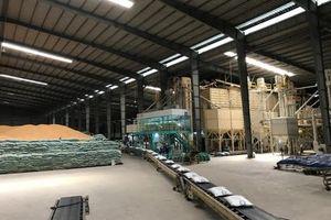 Tập đoàn SunRice mua lại nhà máy chế biến gạo của Việt Nam