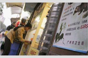 Trung Quốc: Nhân viên bị phạt uống nước tiểu, ăn gián sống