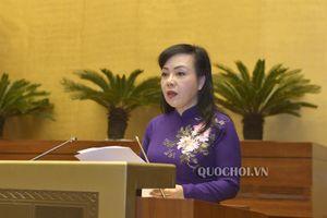 Quốc hội nghe Tờ trình về dự án Luật Phòng, chống tác hại của rượu, bia