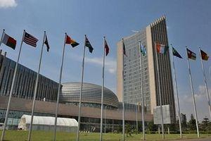 Thượng đỉnh đặc biệt châu Phi tối ưu hóa cải cách nội bộ