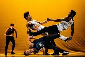 Thưởng thức màn trình diễn đỉnh cao của các vũ công chuyên nghiệp Pháp