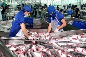 Việt Nam cần xây dựng năng lực cạnh tranh bền vững