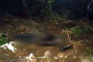 Xác định được danh tính, hé lộ nguyên nhân vụ thi thể người đàn ông bị mất đầu ở Thanh Hóa
