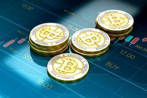 Giá Bitcoin hôm nay 10/11: Bất ngờ sụt giảm mạnh