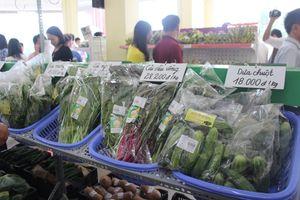 Nam Định: Khai trương Trung tâm giới thiệu sản phẩm nông nghiệp sạch