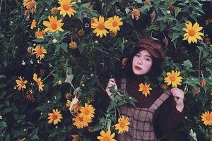 Hoa dã quỳ, đồi cỏ hồng mê mẩn giới trẻ tới Đà Lạt check-in