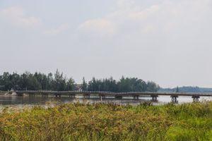 Cầu Hà Tân ở Quảng Nam xuống cấp nghiêm trọng