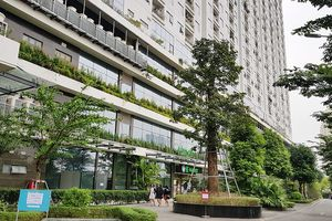 Cần có người 'cầm trịch' để phát triển đô thị xanh