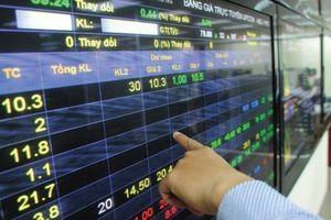 Sử dụng 38 tài khoản để thao túng cổ phiếu IBC, một cá nhân bị phạt 700 triệu đồng