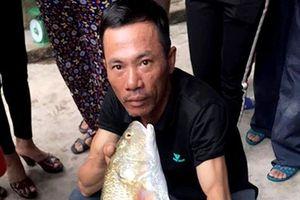 Nghệ An: Ngư dân câu được cá lạ 5kg, nghi cá sủ vàng quý hiếm