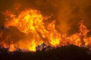 Mỹ: Cháy rừng lan nhanh khiến hàng trăm người bị mắc kẹt, sơ tán khẩn cấp 27.000 người