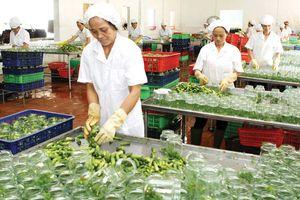5 năm tái cơ cấu nông nghiệp: Xuất khẩu nông sản chiếm vị trí thứ 2 Đông Nam Á