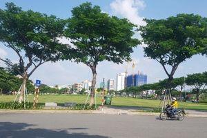 Chủ tịch Đà Nẵng nói về việc hủy kết quả đấu giá Khu đất A20