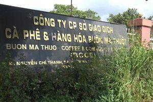 Đắk Lắk chính thức đóng cửa sàn giao dịch cà phê Buôn Ma Thuột