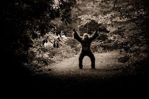 Những bí ẩn rừng già chưa thể lý giải