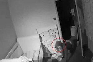 Bố ngồi trong quán rượu hốt hoảng nhìn camera an ninh thấy trộm bò vào phòng ngủ của con trai 2 tuổi
