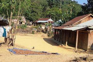 Quảng Nam: Không tin nổi có làng '4 không' giữa thế kỷ 21