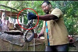 Rắn có 2 màu đen trắng bí ẩn xuất hiện ở Ấn Độ