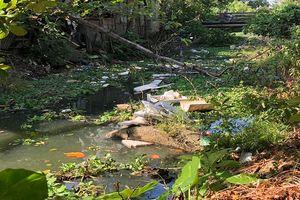 Thừa Thiên Huế: Chính quyền địa phương 'bất lực' nhìn sông ô nhiễm