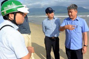 Khẩn trương kiểm tra, xác minh vụ cá chết dạt vào bờ biển Đà Nẵng