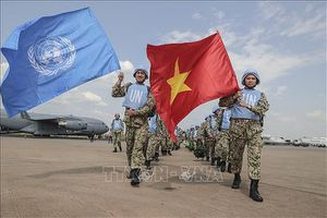 Liên hợp quốc: Biểu tượng của tinh thần đoàn kết toàn cầu
