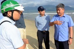 Kiểm tra, xác minh vụ cá chết trôi dạt vào bờ biển Đà Nẵng