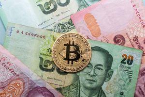 Giá Bitcoin hôm nay 11/11: Thị trường cuối tuần buồn chán