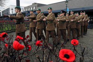 Những bông hoa trong ngày thế giới kỷ niệm kết thúc Thế chiến 1