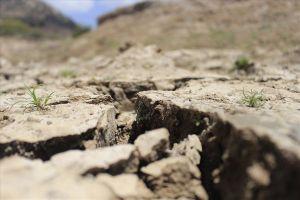 Bước vào mùa mưa: Ninh Thuận vẫn đối mặt với hạn hán