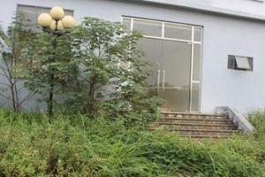 Kỳ lạ hơn 1200m2 đất được xây nhà cao tầng kiên cố rồi bỏ hoang tại Hà Nội