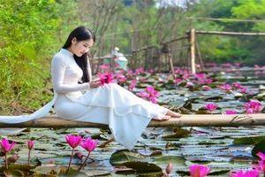Rủ nhau check in mùa hoa súng nhuộm hồng suối Yến chùa Hương
