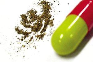 Bắt vụ vận chuyển 120.000 viên thuốc con nhộng không rõ nguồn gốc