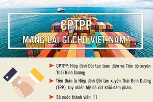 CPTPP mang lại gì cho Việt Nam?