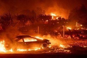 ĐSQ Việt Nam tại Mỹ thông tin về người Việt trong vụ cháy rừng ở California