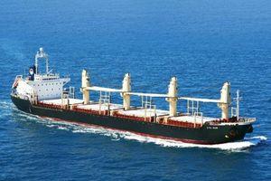 Đấu giá bán cổ phần CTCP Vận tải và Thuê tàu biển Việt Nam