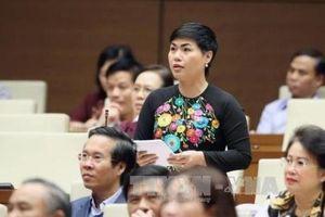 Đại biểu Quốc hội hiến kế khắc phục tình trạng trốn thuế, chuyển giá