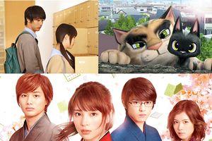 Liên hoan phim Nhật 2018 chiếu miễn phí đặc biệt tại Huế, thí điểm bán vé tại Đà Nẵng