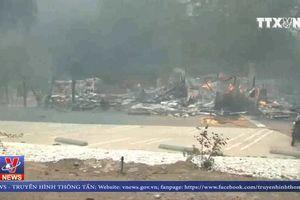Số người thiệt mạng do cháy rừng tại California (Mỹ) lên tới 26 người