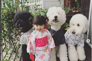 Chùm ảnh em bé Nhật và 3 chú chó cưng siêu dễ thương